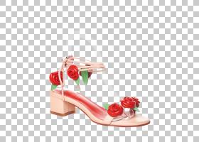 花卉背景,花卉,切花,桃子,花瓣,高跟鞋,户外鞋,玫瑰秩序,玫瑰家族