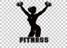 女卡通,手臂,肌肉,体育,权重,关节,运动器材,肩部,健美,女人,女性
