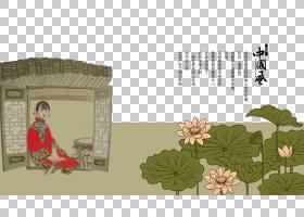 莲花,草,花,树,文本,植物群,植物,彩绘莲花工作室,搜索引擎,莲子,