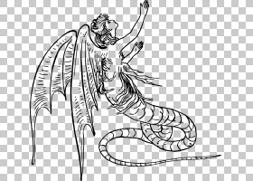 龙背景,黑白,机翼,野生动物,关节,颈部,头部,女人,卡通,龙夫人,线