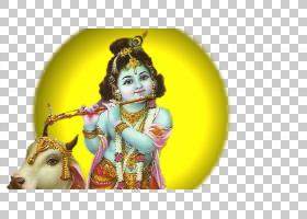 简玛什塔米宗教,罗达,宗教,莫尔蒂,Bhajan,罗达・克里希纳(Radha