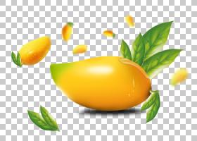 芒果叶,花,柑橘,叶,植物,天然食品,黄色,拉伸标记,疤痕,Clausena