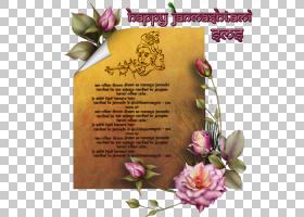 花卉背景,贺卡,花瓣,花卉,插花,花,消息,舞蹈,纳瓦拉特里,花卉设