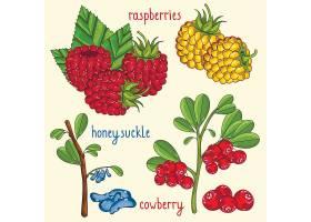 创意水果蔬菜外形图标图鉴科普设计