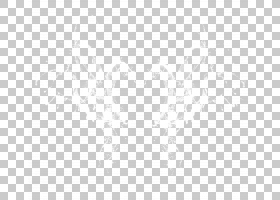 白色纹理背景,黑白,线路,矩形,纹理,圆,点,对称性,正方形,角度,黑