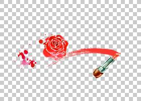 水彩花卉背景,红色,文本,玫瑰家族,花,花瓣,面粉,嘴唇,影像银行(B