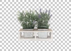 木桌,草,矩形,草药,表,植物,房子,厨房,材质,烹饪炉灶,木塑复合材
