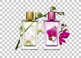 肥皂卡通,瓶子,健康美容,玻璃瓶,花,肥皂,乔・马龙伦敦,铃铛香精,