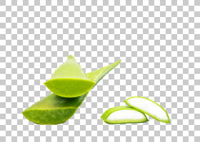 芦荟叶,石灰,关键石灰,水果,柠檬柠檬,食物,叶,芦荟,免费,皮肤,绿