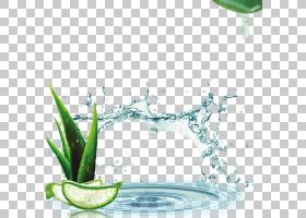 花卉图案背景,花卉设计,饮具,设计,绿色,餐具,玻璃,水,模式,植物