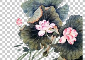 水彩花卉背景,草本植物,水彩画,花瓣,植物,文森特・梵高,版画制作