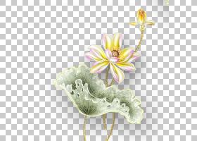 粉红色花卡通,花卉设计,插花,花,花瓣,植物群,植物,红色,墙,3D计