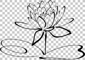 黑白花,圆,花卉,植物茎,对称性,线路,叶,切花,花瓣,植物,黑色,植