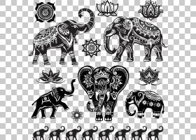 大象背景,非洲象,黑白,视觉艺术,象科,剪影,绘图,装饰,印度象,大图片