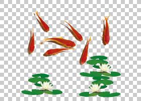 新年红色背景,植物茎,花瓣,叶,花,植物,莫达德,宠物,容器,水族馆,