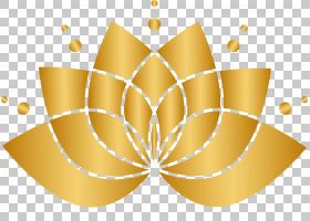 花金,线路,圆,黄色,起皱,单元格,对称性,胶原蛋白,脸,弹性,灯光,