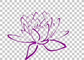 紫色水彩花,圆,对称性,植物茎,花卉设计,洋红色,面积,线条艺术,线