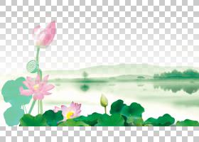 绿草背景,草本植物,草,植物茎,春天,绿色,植物群,神圣莲花,水,莲