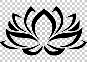 黑白花,机翼,飞蛾与蝴蝶,传粉者,植物群,视觉艺术,黑白,线路,植物