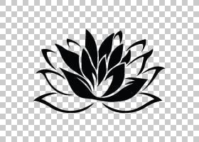黑白花,符号,花瓣,线路,树,植物群,植物,叶,黑白,鳄鱼,当代艺术画
