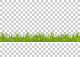 家庭卡通,冰草,草原,场,草族,天空,商品,草甸,植物,小屋,草,春天,