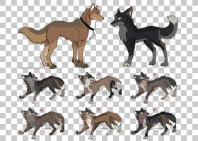 家庭卡通,动物形象,狼,野生动物,灰太狼,线条艺术,父亲,狼人,家庭