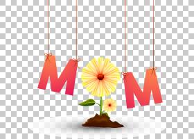 教师节教师,桃子,花瓣,橙色,贺卡,免费,国际妇女节,女人,礼物,母