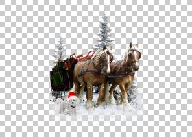 圣诞节冬季背景,手推车,马车,马刺,马车夫,雪,树,圣诞装饰品,冬天图片