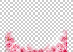 粉红色花卡通,纺织品,玫瑰家族,心,玫瑰,礼物,粉红色的花,光栅图