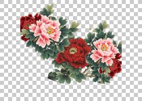粉红色花卡通,花卉,花束,粉红色家庭,一年生植物,大丽花,插花,切