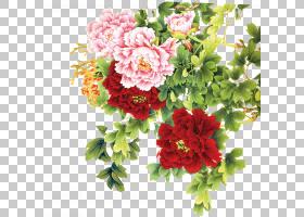 粉红色花卡通,花卉,花束,粉红色家庭,一年生植物,插花,切花,康乃