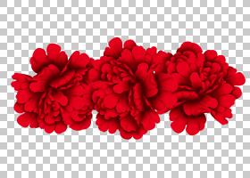 粉红色花卡通,花卉设计,粉红色家庭,洋红色,切花,康乃馨,草本植物