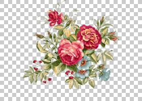 粉红色花卡通,花卉,插花,植物群,蔷薇,花瓣,玫瑰秩序,玫瑰家族,植