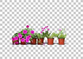 粉红色花卡通,花卉,草,插花,切花,植物群,人造花,花卉设计,花瓶,