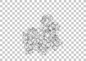 黑白花,黑白,线路,白色,花卉设计,视觉艺术,面积,植物群,点,牡丹,