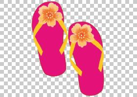 粉红色花卡通,鞋,人字拖,洋红色,鞋类,户外鞋,拖鞋,花瓣,花,粉红