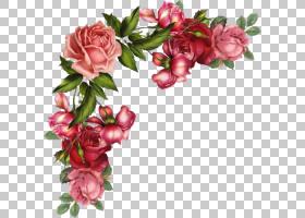 粉红色花卉背景,杜鹃花,花卉设计,粉红色家庭,插花,切花,蔷薇,花