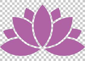 粉红色花卡通,圆,植物,洋红色,花瓣,叶,丁香,花,紫罗兰,紫色,粉红