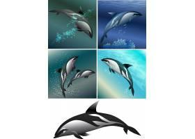 海豚儿童卡通形象