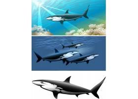鲨鱼儿童卡通形象
