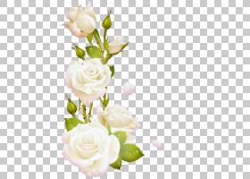 婚礼花束,婚礼仪式用品,人造花,植物茎,栀子,蔷薇,植物,花束,玫瑰
