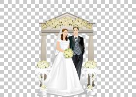 新娘和新郎,新娘服装,婚礼仪式用品,花卉,新郎,正式着装,花卉设计