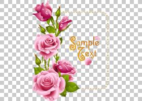 水彩画花框,花卉,花束,插花,切花,人造花,贺卡,花瓣,玫瑰秩序,玫