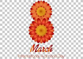 花卉婚礼邀请函背景,非洲菊,字体,大丽花,橙色,切花,花卉设计,插