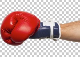 拳击手套,拳击设备,手臂,手,Everlast,泰拳,女子拳击,拳击训练,拳图片