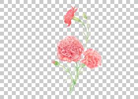 背景家庭日,人造花,桃子,花卉,花瓣,粉红色家庭,植物,粉红色,母亲图片