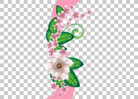 背景教师节,花束,插花,切花,花,花卉,传粉者,花瓣,植物群,植物,PP
