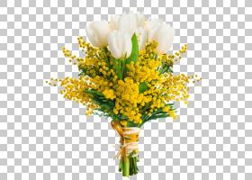 花卉剪贴画背景,插花,含羞草,花卉设计,黄色,植物,花店,母亲节,3图片