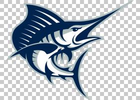 海滩背景,符号,机翼,鱼,徽标,佛罗里达,棕榈滩大西洋旗鱼,女子长图片