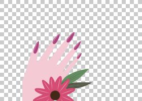 名片设计,花卉设计,洋红色,非洲菊,花瓣,花,粉红色,业务,美甲沙龙